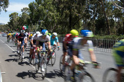 Adelaide Tour Down Under 41 Stock Images