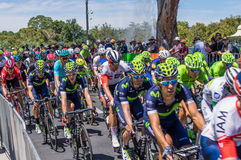 Adelaide Tour Down Under 2016 Stock Images
