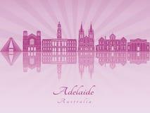 Adelaide V2 linia horyzontu w purpurowej opromienionej orchidei Zdjęcie Stock