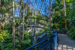Adelaide View 3. Adelaides Botanic Garden and the Bicentennial Conservatory Royalty Free Stock Images