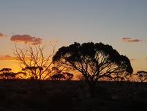 Adelaide zonreeks de Zuid- van Australië Royalty-vrije Stock Foto's
