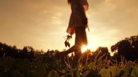 Adelgace a la muchacha descalza borrosa que sostiene sus zapatos del tacón alto disponibles Colores anaranjados de la puesta del  Fotografía de archivo libre de regalías