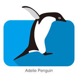 Adelie penguin jumping, Penguin series, vector illustration Royalty Free Stock Images