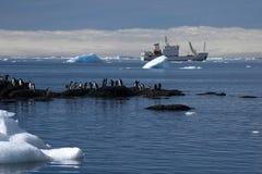 Adelie-Pinguine auf Wellenbrecher mit Schiff im Hintergrund Lizenzfreie Stockfotos