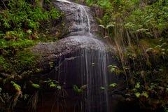 Adelina Falls Fotografia Stock Libera da Diritti