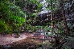 Adelina Falls bij Zuiden Lawson Waterfall Circular Walking Track stock fotografie