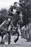 Adeln Sie auf dem Pferd Lizenzfreie Stockbilder