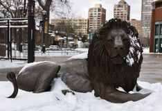 Adelor dans la neige Images libres de droits