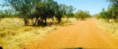 Adels树丛在澳洲内地澳大利亚 库存图片