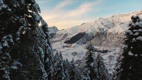Adembenemend de winterlandschap van sneeuw afgedekte pijnboombomen en prachtige bergen stock footage