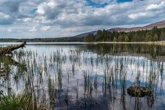 Adembenemend landelijk berglandschap stock foto's
