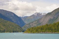 Adembenemende Fjord in Alaska in de zomer stock foto