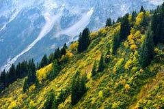 Adembenemende lansdcape van bergen, bossen en kleine Beierse dorpen in de afstand Toneelmening van Beierse Alpen met het meest ma Royalty-vrije Stock Foto's