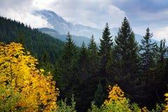 Adembenemende lansdcape van bergen, bossen en kleine Beierse dorpen in de afstand Toneelmening van Beierse Alpen met het meest ma Stock Foto