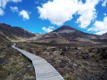 Adembenemende vulkanische landschapsmening met het onderstel Ngauruhoe op de achtergrond Één van de grote gangen in Nieuw Zeeland Stock Afbeeldingen