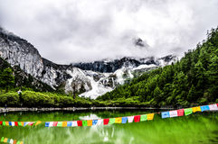 Aden Nature Reserve in China Royalty Free Stock Image