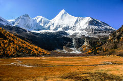 Aden yading mountains in China. Chinas sichuan province  daocheng yading aden yangwaiyong   Mountain Stock Image