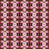 Adenium flowers seamless Stock Images