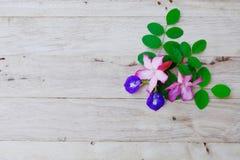 Adenium, pink desert rose and pea flower on wood background. Nature, beautiful, adenium, desert, rose, roses, plant, flora, tree, spa, garden, red, natural royalty free stock photo