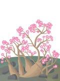 Adeniumöknen steg Royaltyfri Fotografi