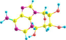 Adenosinmolekül lokalisiert auf Weiß vektor abbildung