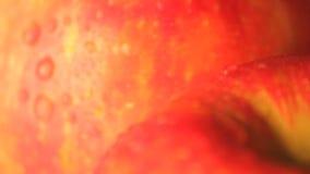 Adentro enfocadas manzanas mojadas que giran almacen de metraje de vídeo