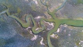 Adern des Wassers Stockbilder