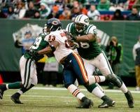 Adewale Ogunleye Chicago Bears Lizenzfreie Stockbilder