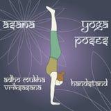 Adho Mukha Vriksasana. Handstand. Royalty Free Stock Images