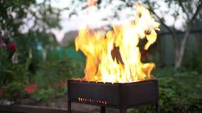 Adición de la leña en llama ardiente almacen de video