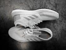 ADIDAS ÖKAR ULTRA, vita och gråa skor på en svart keramisk bakgrund fotografering för bildbyråer