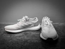 ADIDAS ÖKAR ULTRA, vita och gråa skor på en svart keramisk bakgrund arkivfoton
