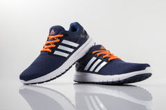 Adidas Classic Sneaker. Top View Stock Image