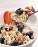 Adiete el desayuno de la pérdida de peso, concepto sano de la vida con el muesli hecho casero con las frutas frescas Imagen de archivo libre de regalías