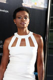 Adina Porter arrives at HBO's  Royalty Free Stock Images
