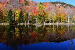 Adirondack Autumn reflections Landscape Royalty Free Stock Photos