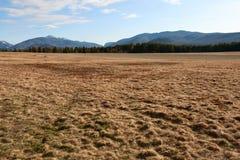Adirondack-Berge nähern sich Lake Placid Stockfotos