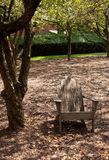 Adirondack chair in forest shade Stock Photos