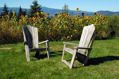 adirondack chairs sunen Royaltyfri Bild