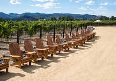 Long line of Adirondack chairs. Adirondack chairs and an umbrella in a vineyard Royalty Free Stock Photography