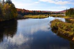 Adirondack flod under nedgånglövverksäsong Royaltyfria Foton
