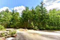Adirondack-Fluss Stockfotografie
