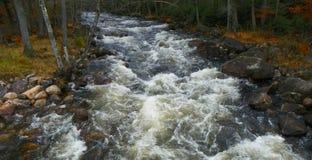 Adirondack-Fluss fließt Herbstwald durch Stockfotografie