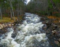 Adirondack-Fluss im Herbstlaub Stockfoto
