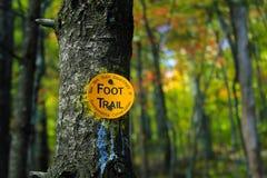 Adirondack-Fuß-Hintermarkierung Stockfotos