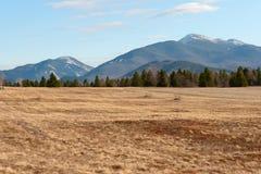 Adirondack góry zbliżają lake placid Zdjęcia Stock