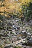 Adirondack-Gebirgsbach im Herbst Lizenzfreie Stockfotos