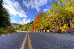Adirondack-Gebirgsstraße und -bäume im Herbst Stockbilder