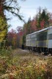 Adirondack-Herbst-Wiesenblumen mit Eisenbahnzug Lizenzfreie Stockfotografie