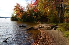 Adirondack lake shoreline during fall foliage splendor. Lake shoreline in autumn showing colored leaves, boat. sunny sky Royalty Free Stock Photography